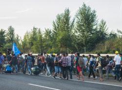 Benevolência ou instrumento político? A questão dos refugiados na Alemanha