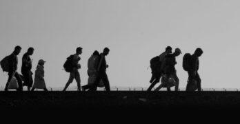 Mês a mês, uma breve retrospectiva dos principais destaques de 2016 no MigraMundo