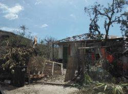 Haitianos ficam presos entre furacões e a política da morte