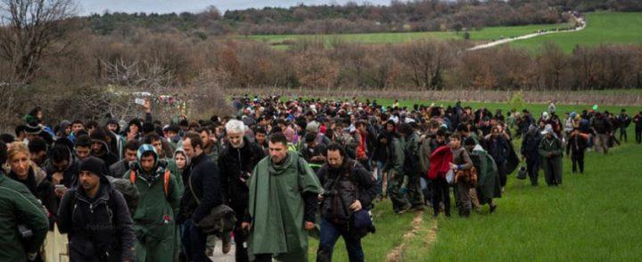 Ministério da Justiça tem novo edital para migrações e refúgio; veja quem pode concorrer