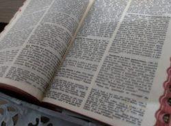 Jesus refugiado? O que a Bíblia fala a respeito de imigrantes, refugiados e deslocados