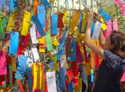 Ensaio: Tanabata Matsuri atrai multidão e pedidos para as ruas da Liberdade