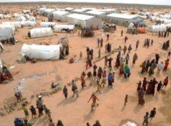 Ignorada, Somália é o quarto país que mais gera refugiados do mundo